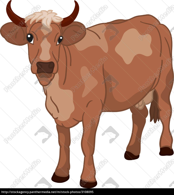 cow - 3108095
