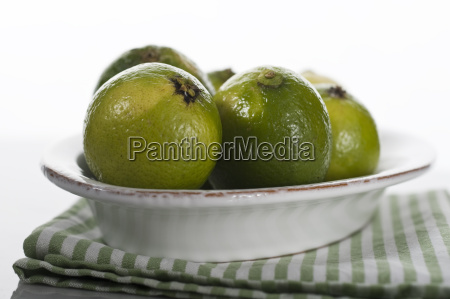 oval shell with lime to green