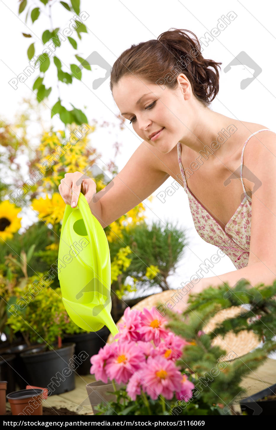 gardening, -, woman, with, watering, can - 3116069