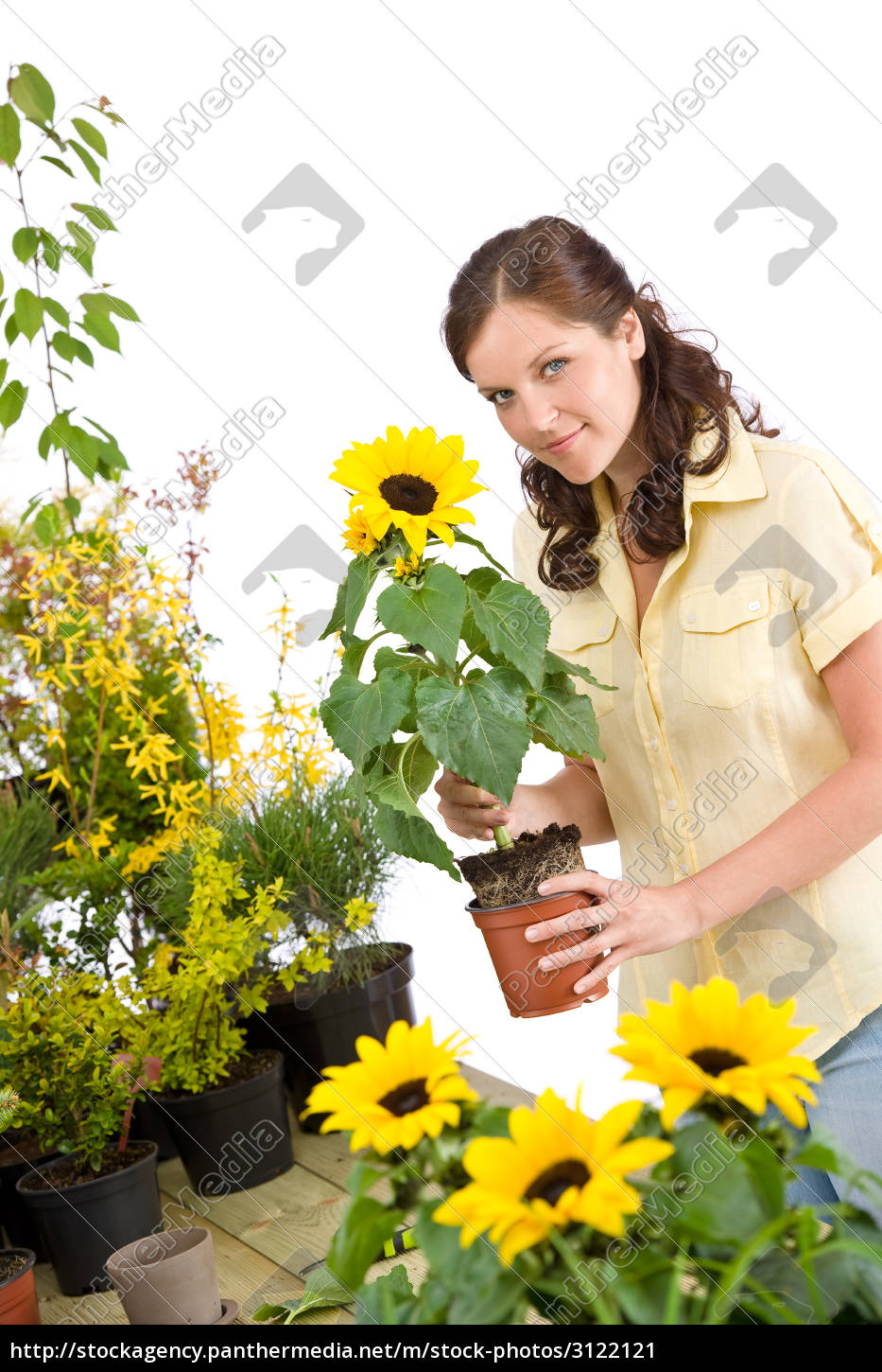 gardening, -, , woman, holding, flower - 3122121