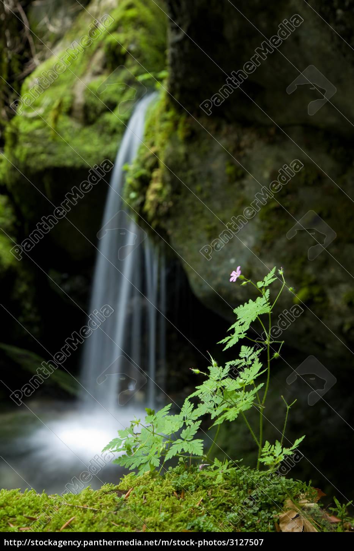 small, waterfall - 3127507