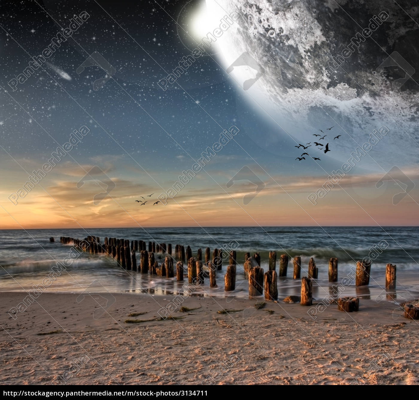 space, beach, seaside, the beach, seashore, moon - 3134711
