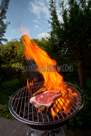 t bone steak auf dem grill