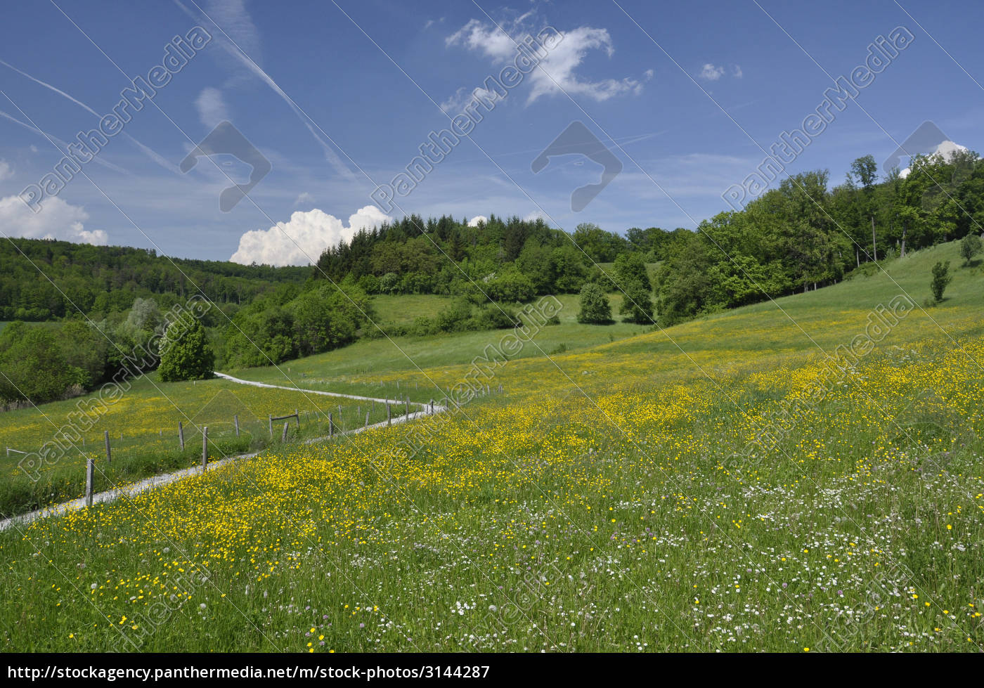 hohenlohe, countryside - 3144287