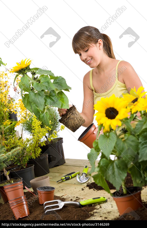 gardening, -, smiling, woman, holding, flower - 3146269
