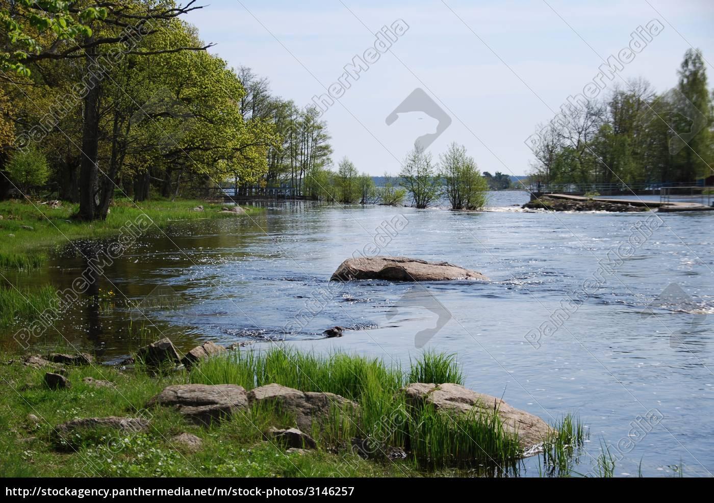 smaland, sweden, salmon, river - 3146257
