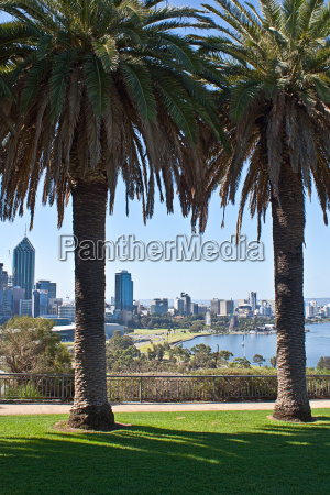 perth with palms