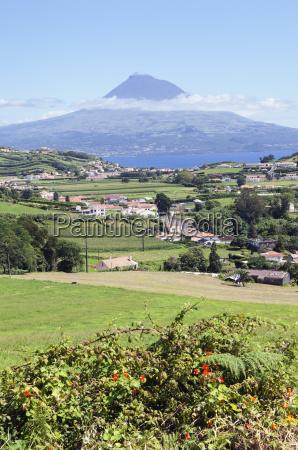 landscape, of, faial, , azores - 3188575