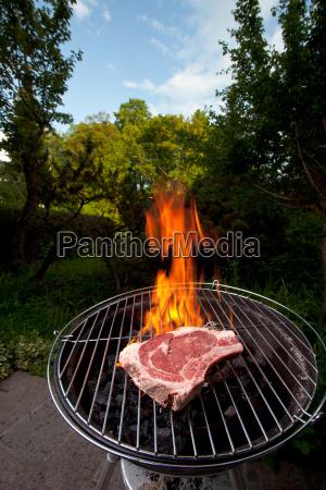 t bone steak on a grill