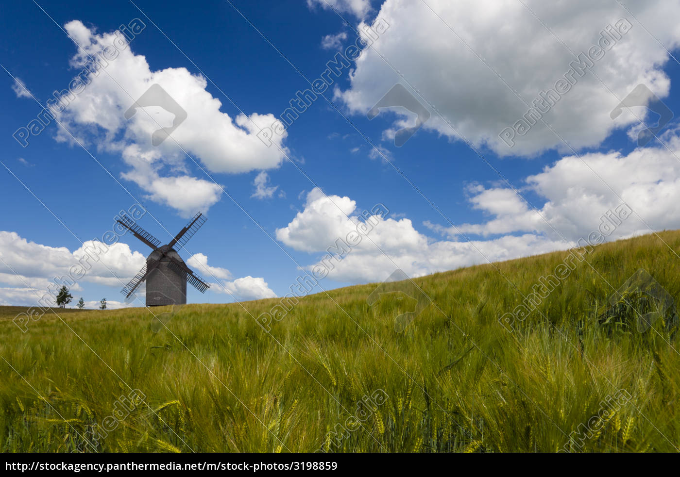 grain, mill, in, brandenburg - 3198859