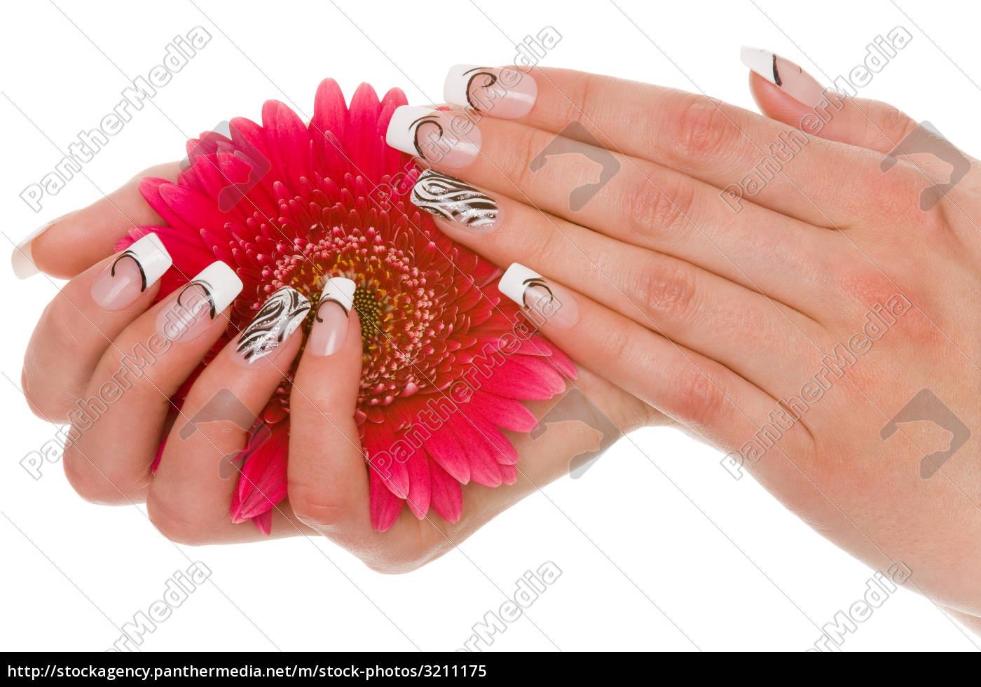 manicure - 3211175