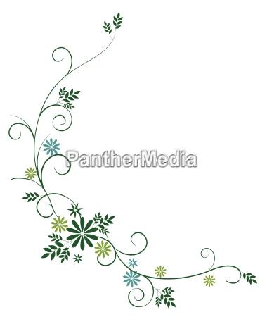 vilde blomster og vinstokke