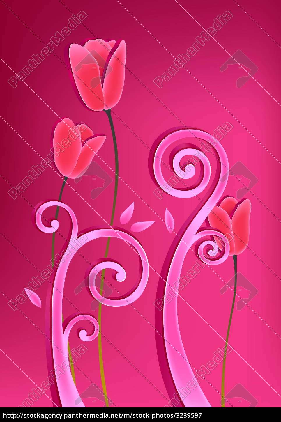 flower, plant, tulip, red, pink - 3239597