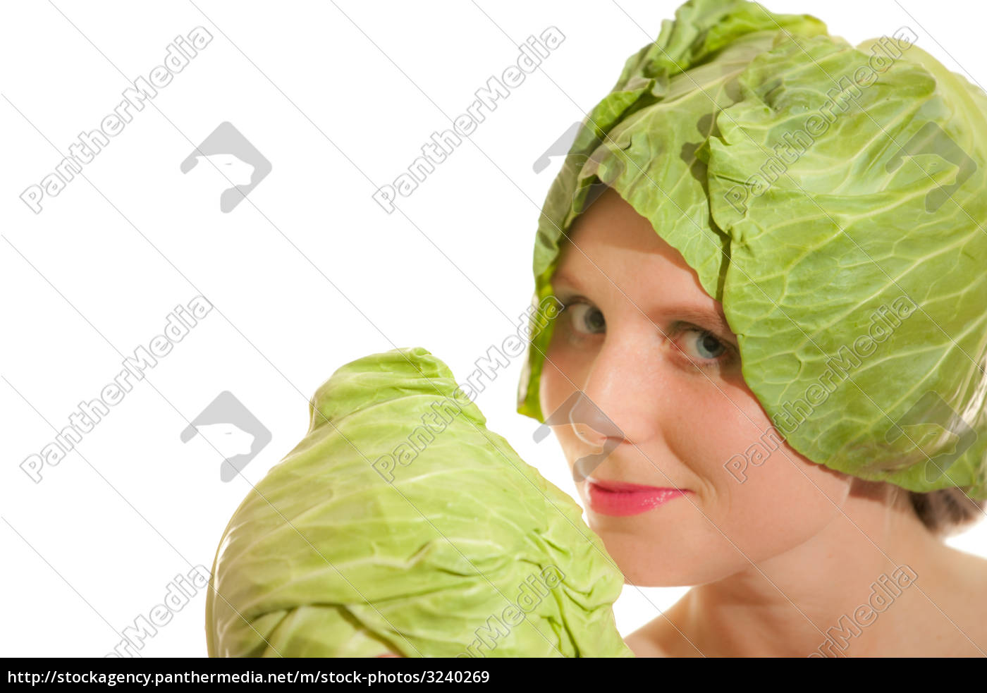 cabbage - 3240269
