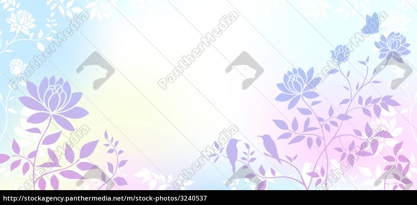 peony, flower - 3240537