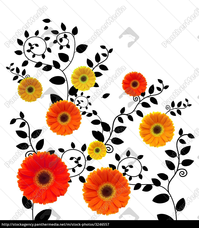 daisy, flower - 3246557