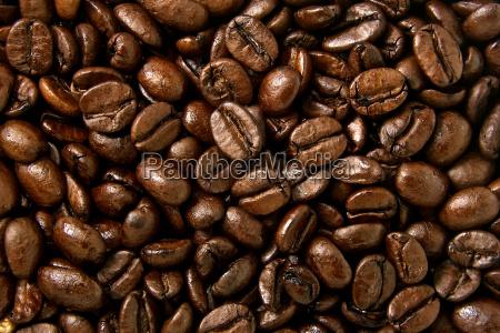 coffee, beans - 3248239