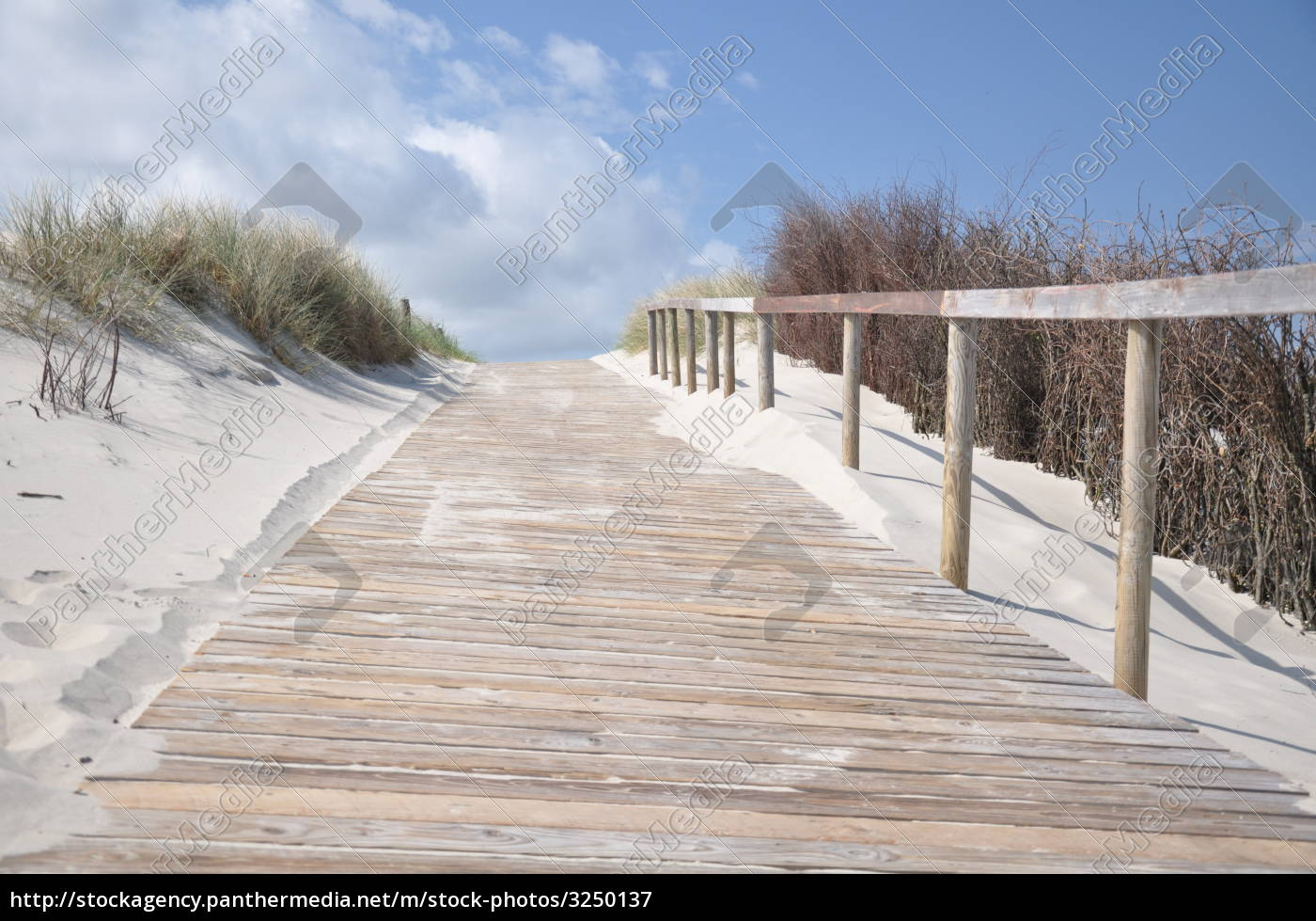 boardwalk, to, the, beach - 3250137