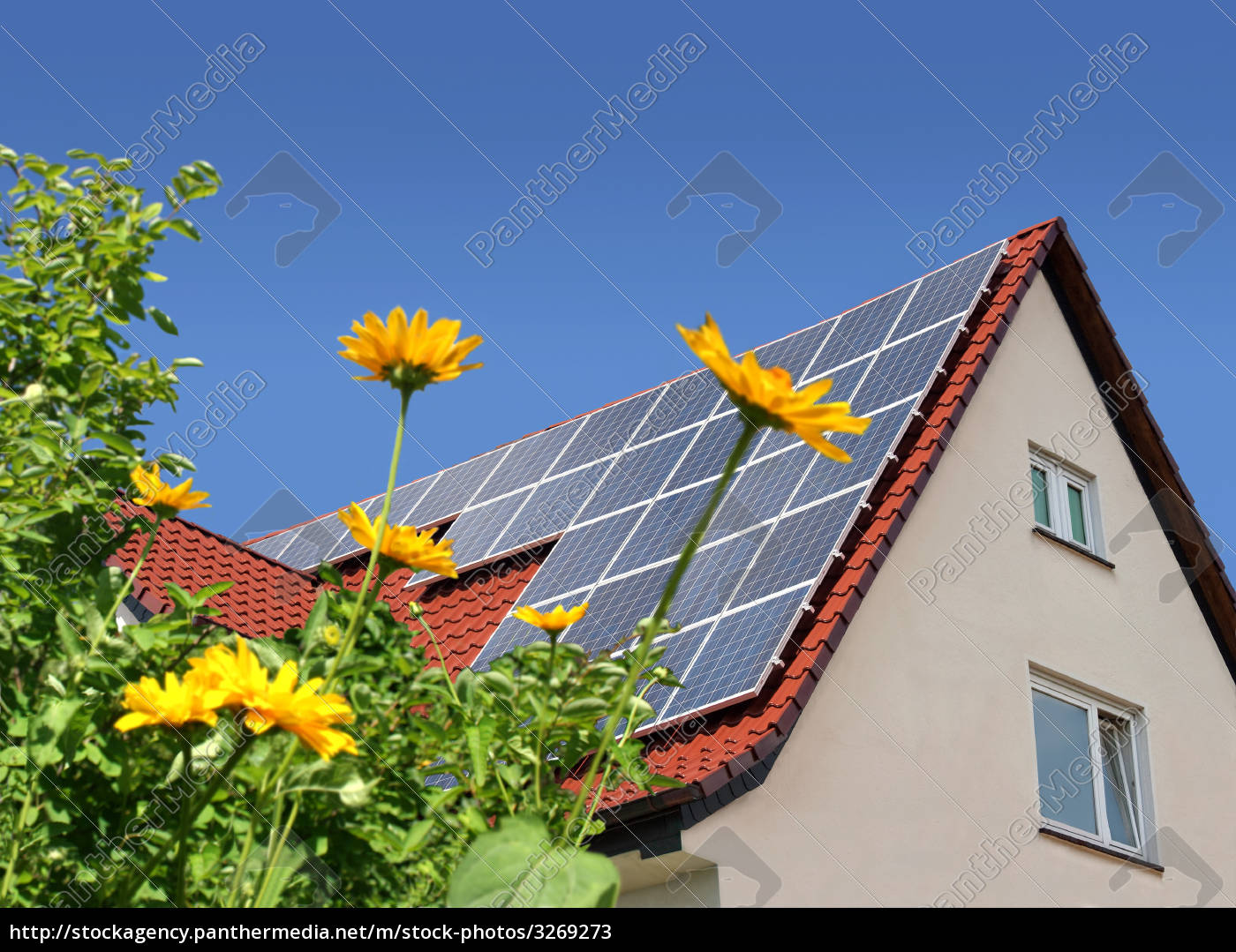 solar, panels, on, roof, behind, flowers - 3269273