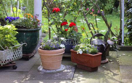 garden-time, flower, pots-terrace - 3274385