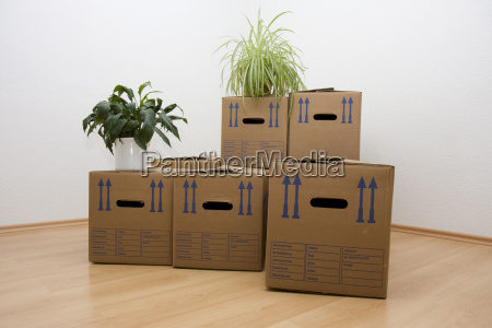 boxes, removal, remove, move, home, flat - 3276669
