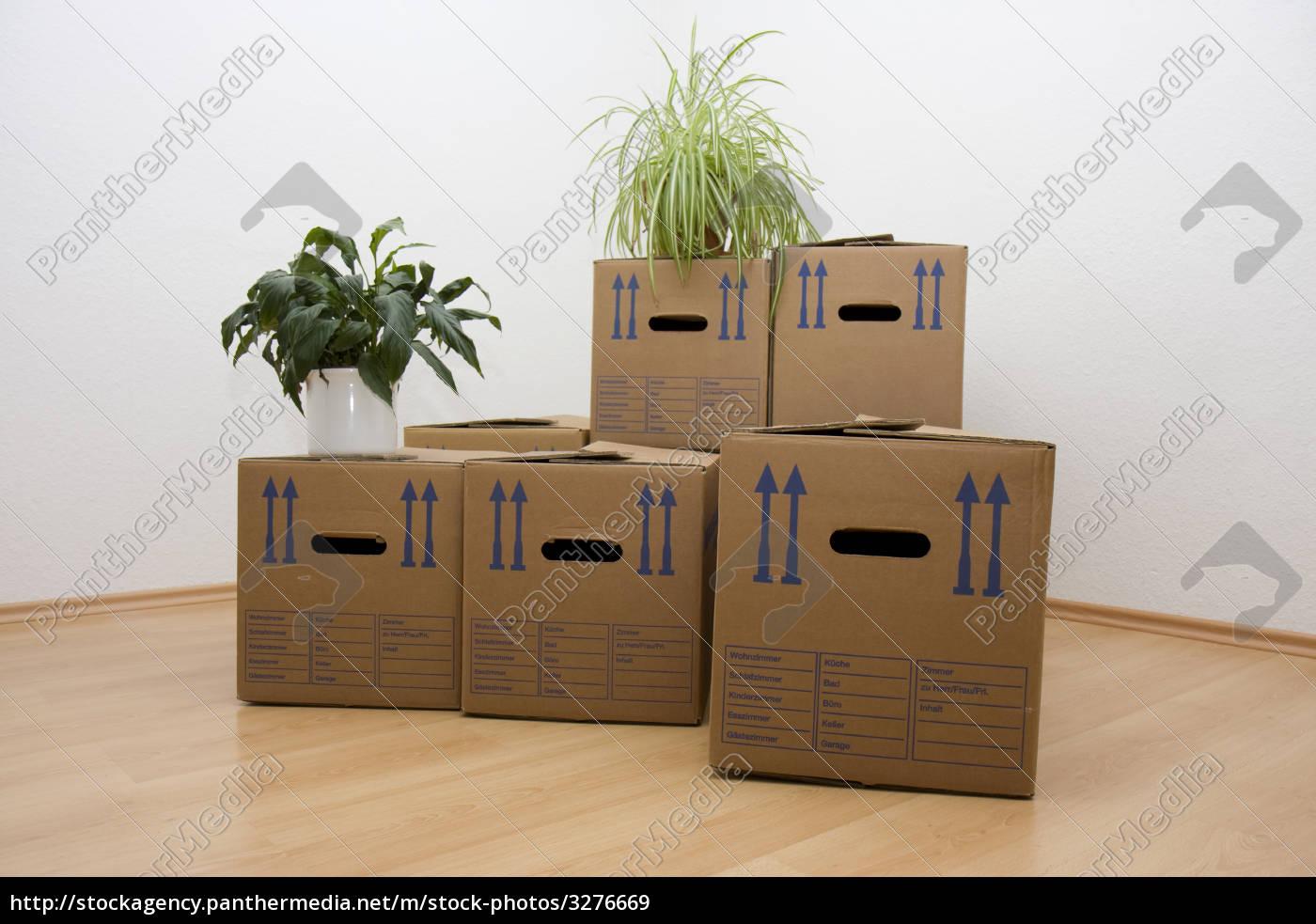 move - 3276669