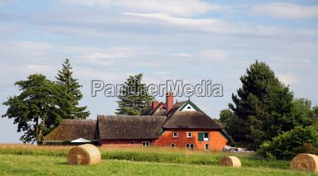 rural, idyll - 3276419