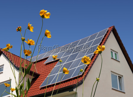 solar, panels, on, roof, behind, flowers - 3276709
