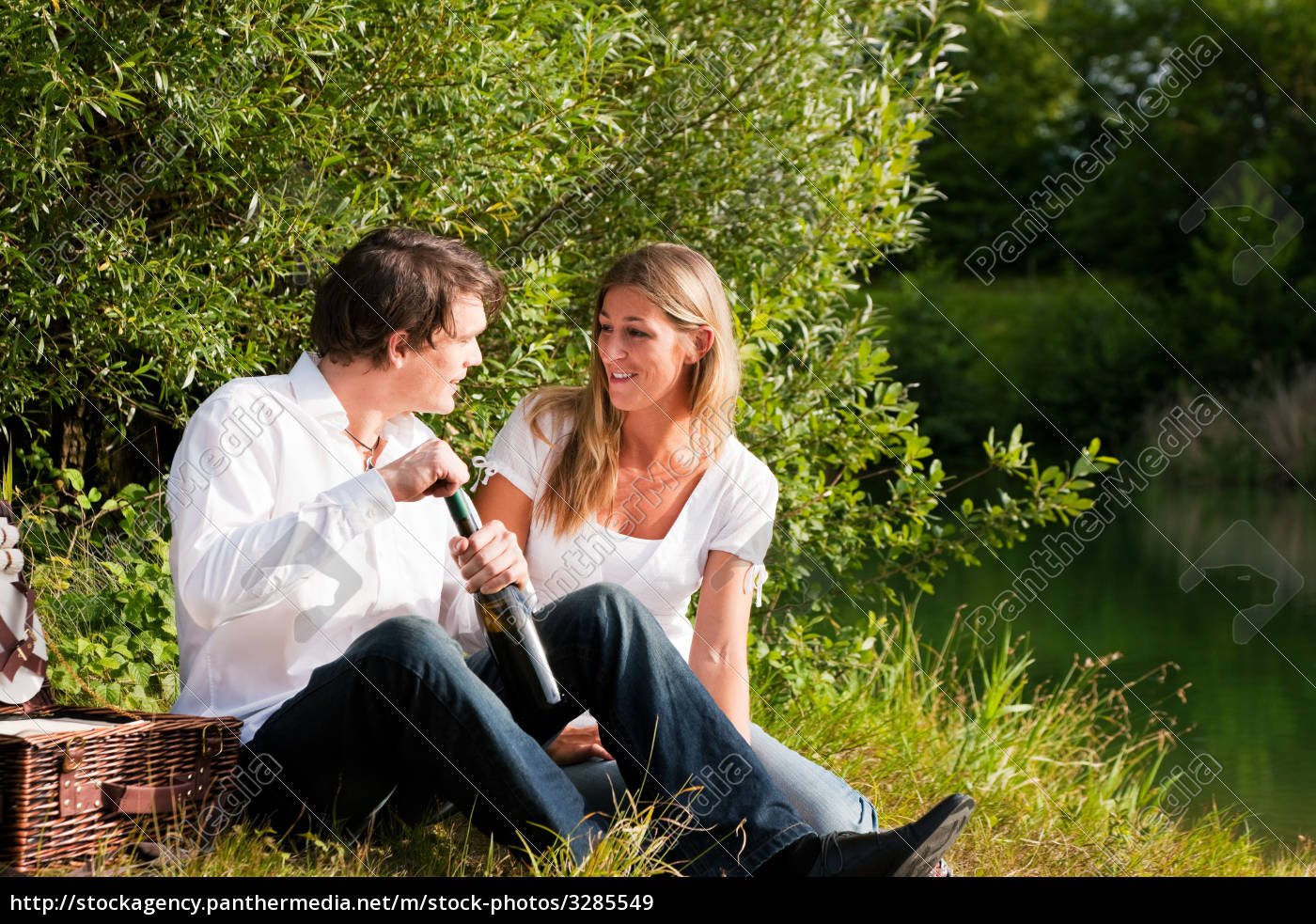 picnic, in, the, countryside, in, summer - 3285549