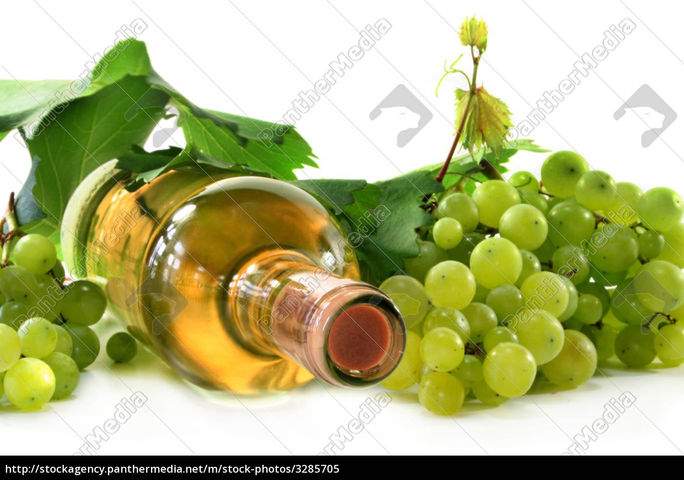 white, wine - 3285705