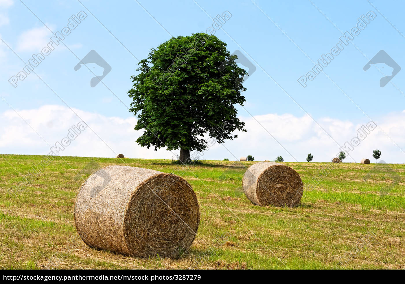 summer, landscape - 3287279