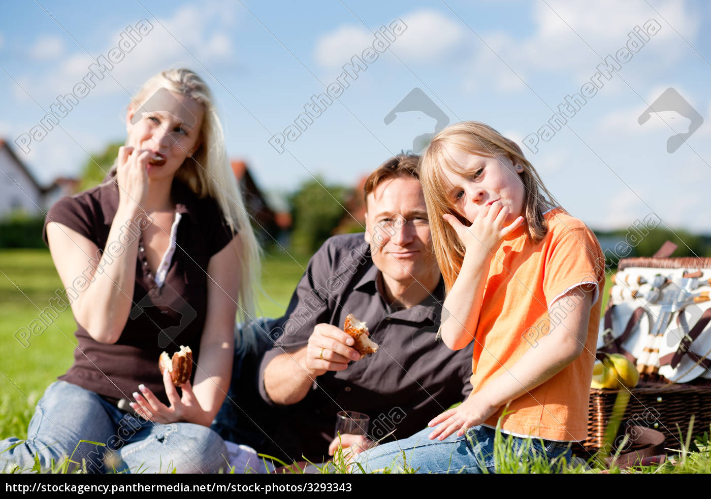 family, having, a, picnic - 3293343
