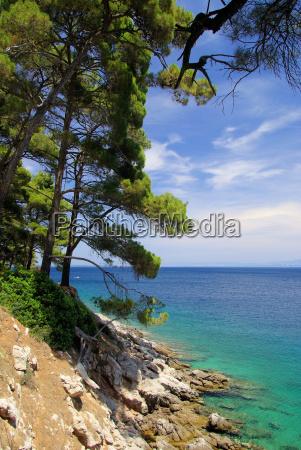 losinj beach losinj beach 08