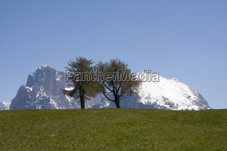 seiser alm with langkofel and sasso