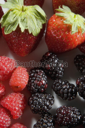 close up of strawberries with blackberries