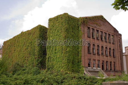 nature brings back building