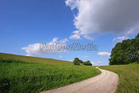 lonely road to horizon