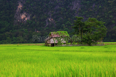farmhouse in laos