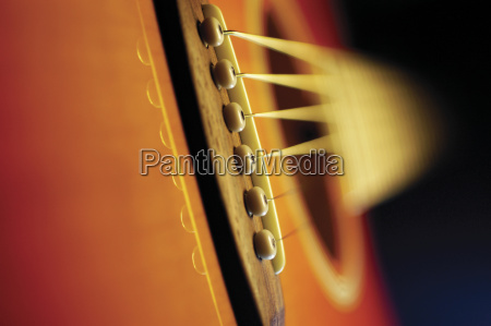 extreme close up of violin bridge