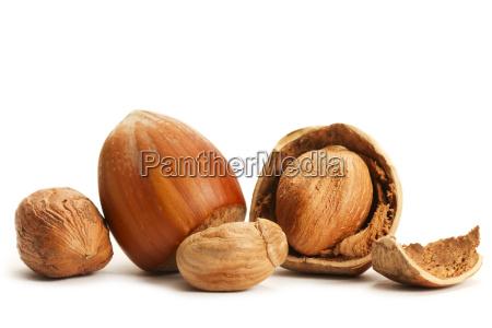 broken and whole hazelnuts