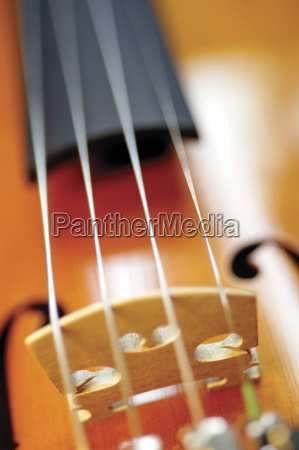 close up of violin and its