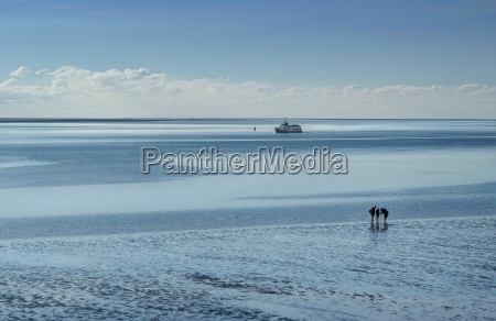 mudflats on the north sea with