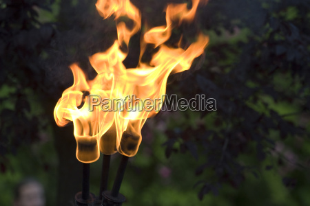 medieval fire torch