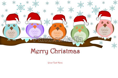 five birds with santa hat on