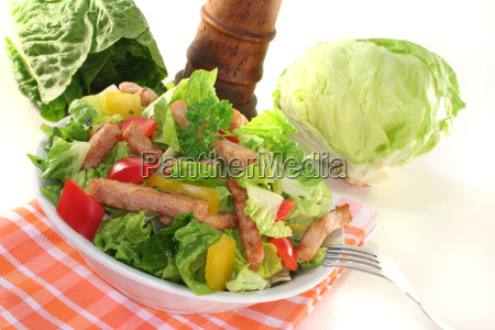 mixed, salad, with, turkey, strips - 3905203