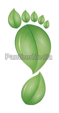 green, foot - 4005501