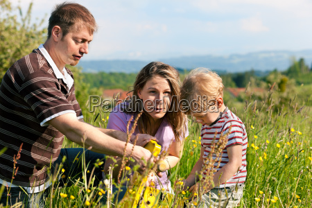 family with child in the meadow
