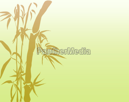 abstract nature lucky bamboo poster card