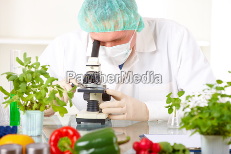 researcher holding up a gmo vegetable