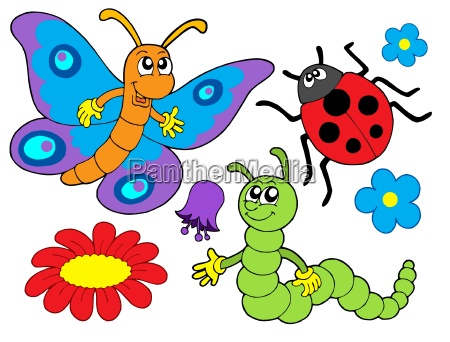 bug and flower illustration